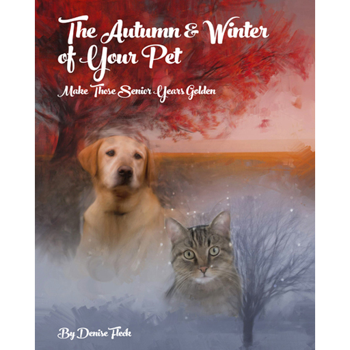 The Autumn & Winter of Your Pet: Make Those Senior Years Golden