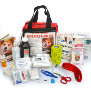 Dog-Home-FIrst-Aid-Kit