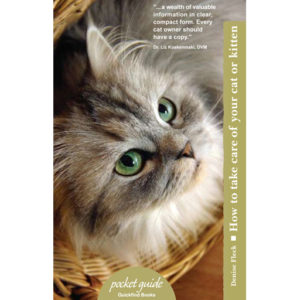 Pocket-Guide-CAT-How-To