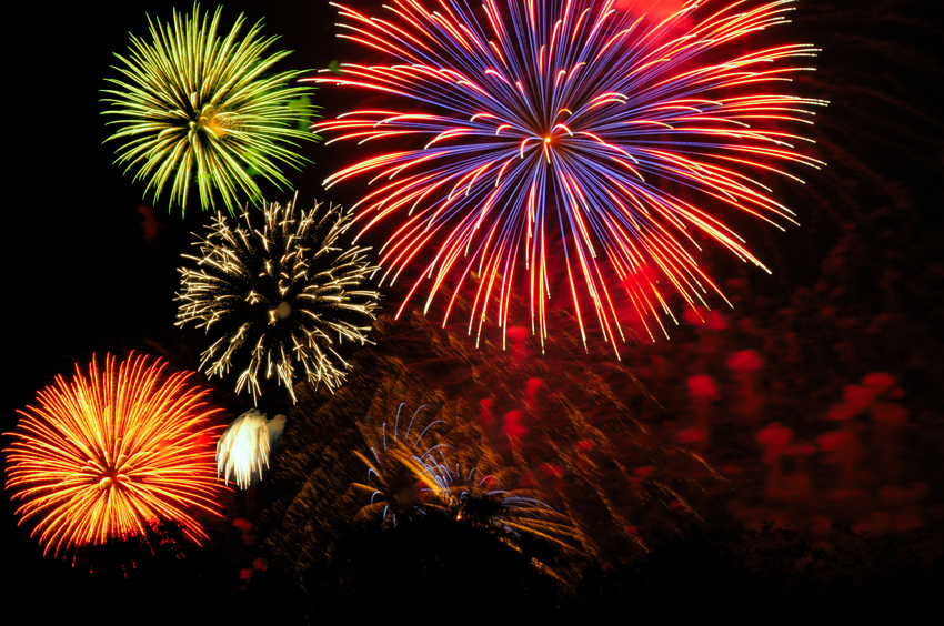 Pet Safety Fourth of July