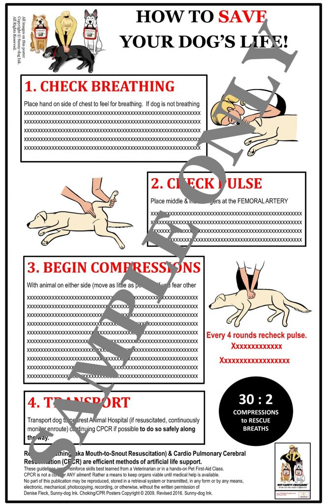 Dog CPCR Poster