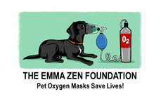 The Emma Zen Foundation