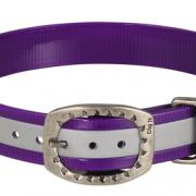 1_+SB+Purple+Ref