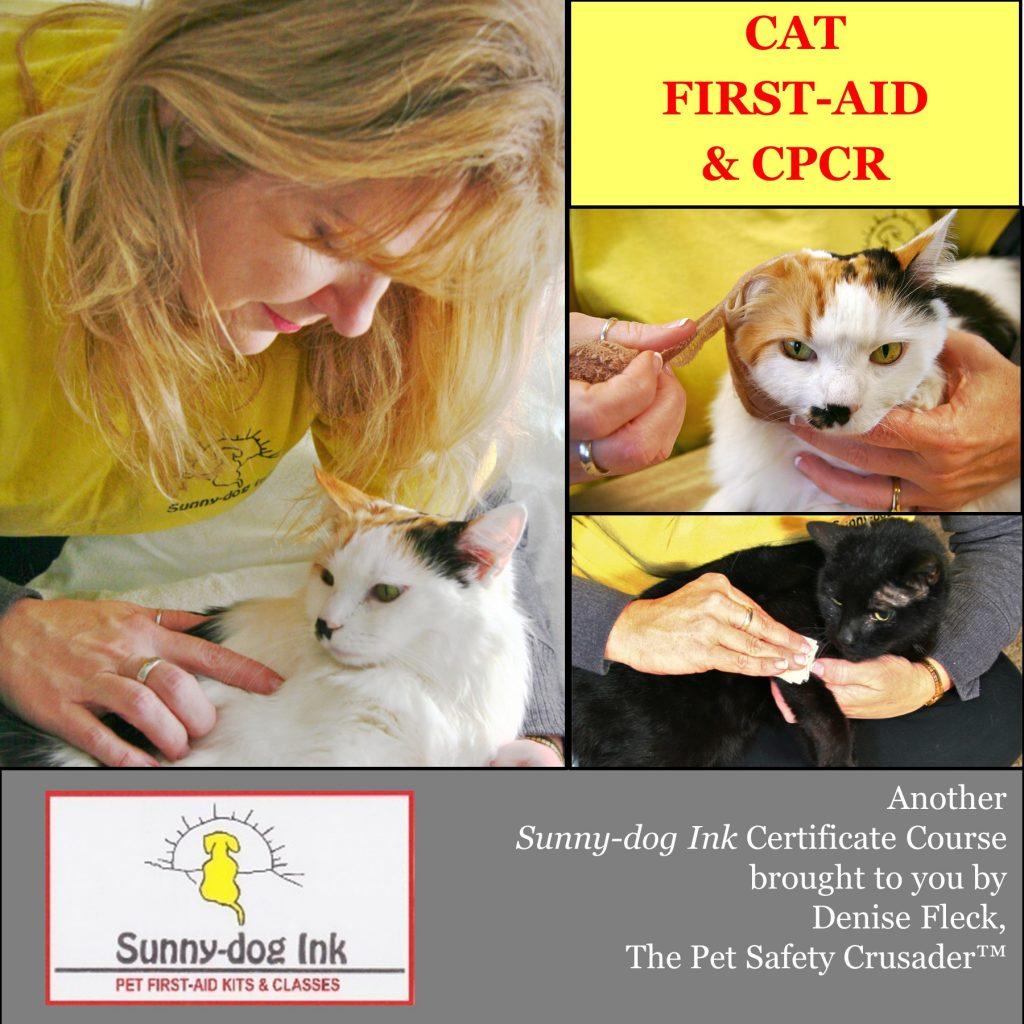 CAT FIRST-AID & CPCR