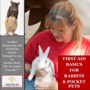 RabbitPocketPetFirstAid