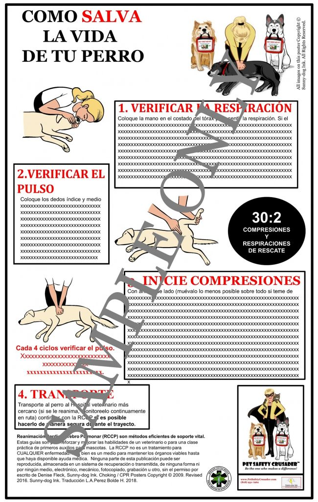 Dog CPCR Poster (Spanish Language Version)