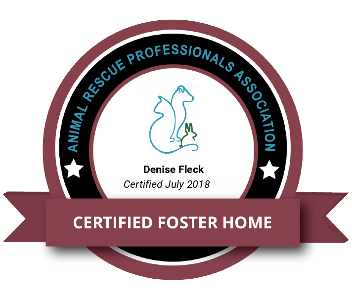 ARPA Certified Foster Home