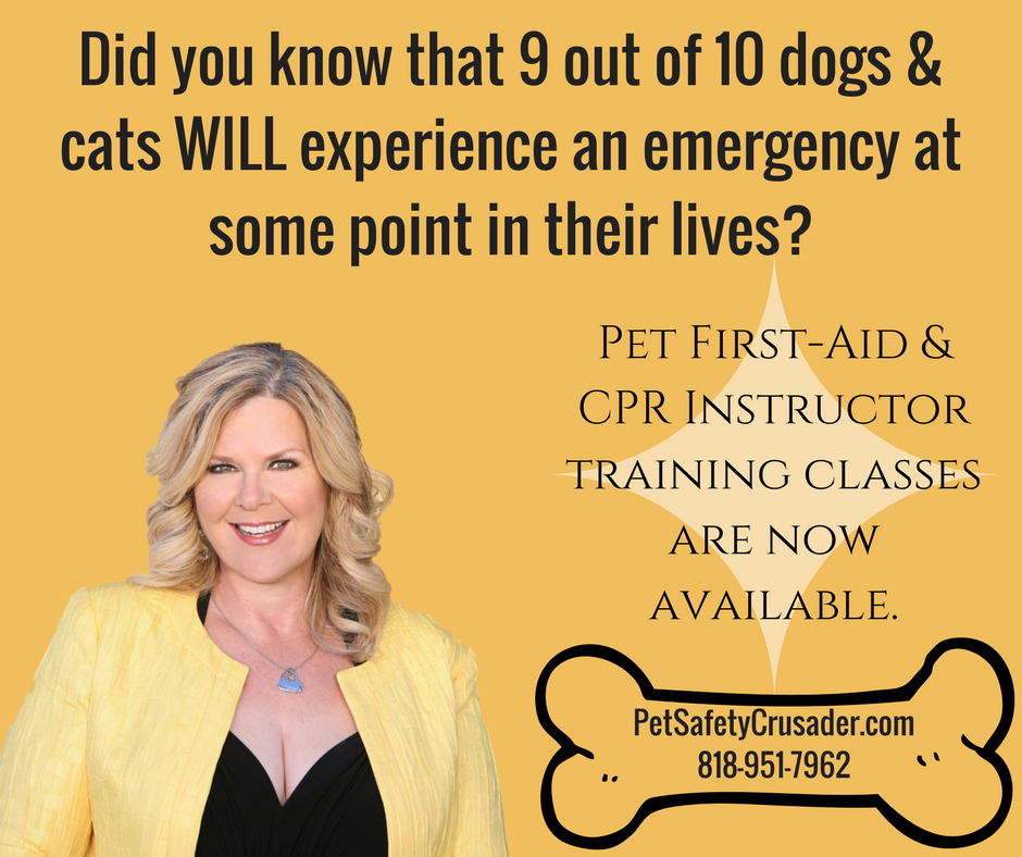 Pet First-Aid INSTRUCTOR Training