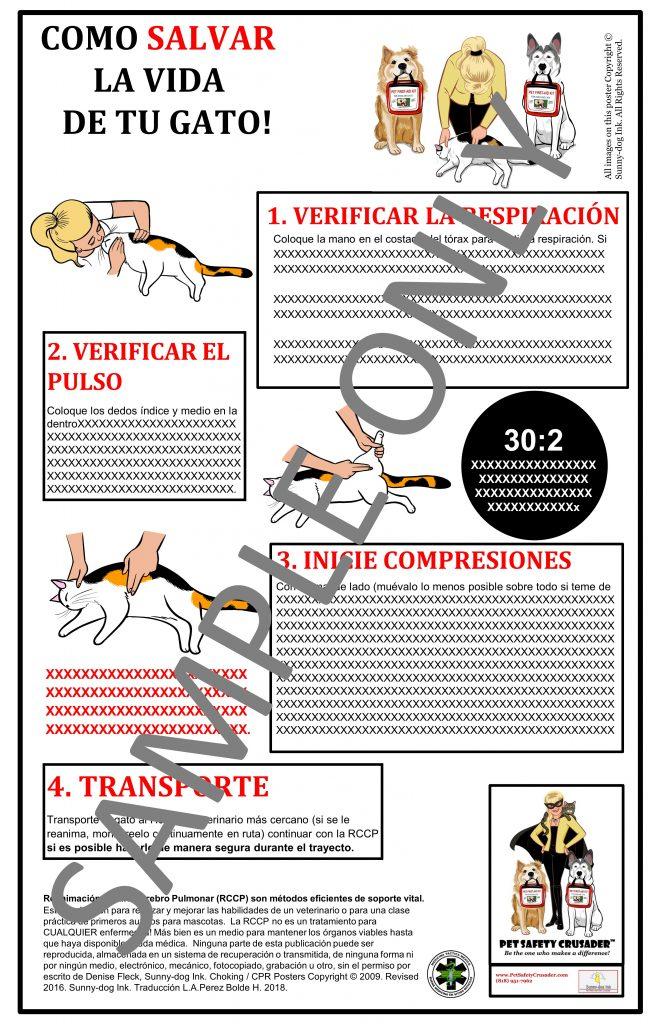Cat CPCR Poster (Spanish Language Version)