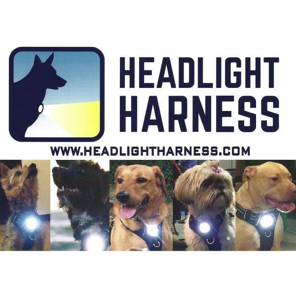 HeadlightHarness