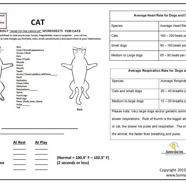 Head-to-TailwVitalsCAT